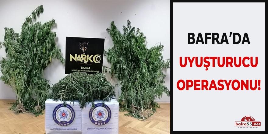 Bafra'da Uyuşturucu Operasyonu!