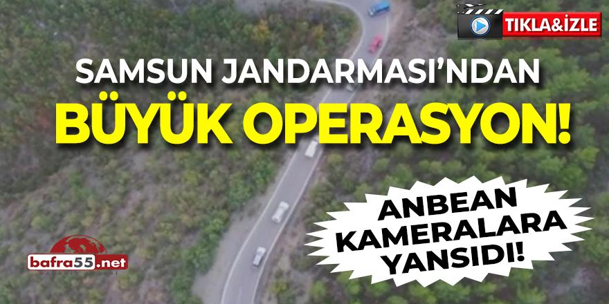 Samsun Jandarması'ndan Büyük Operasyon!