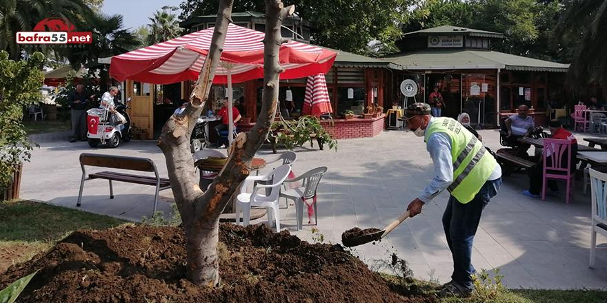 Sakatlar Derneği Bahçesine Çevre Düzenlemesi