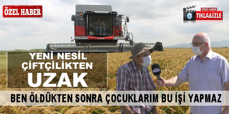 """Çeltik Üreticisi İbrahim Tokur """"Biz öldük mü çiftçilikte öldü"""""""