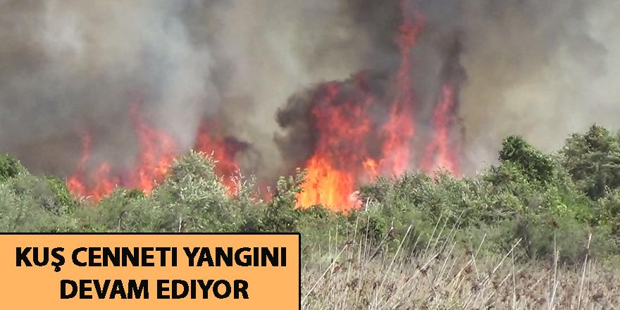Kuş cenneti yangını devam ediyor