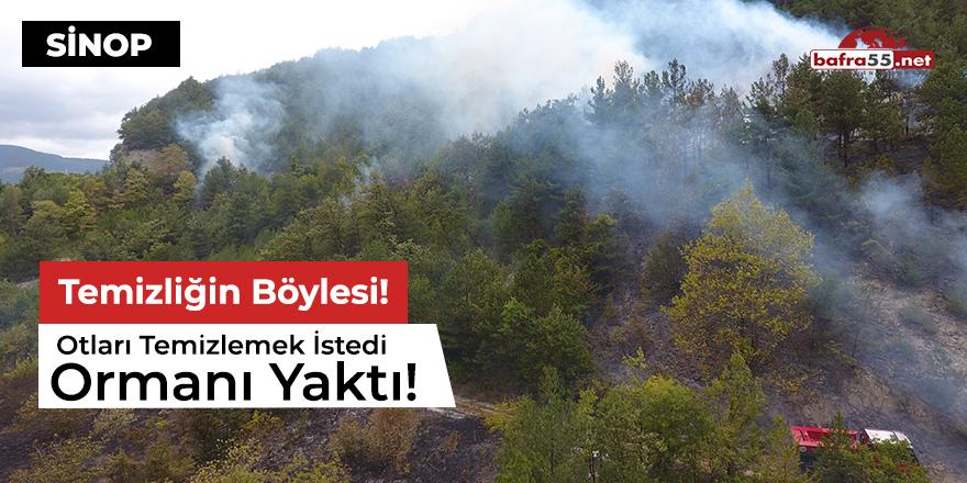 Otları temizlemek istedi, ormanı yaktı!