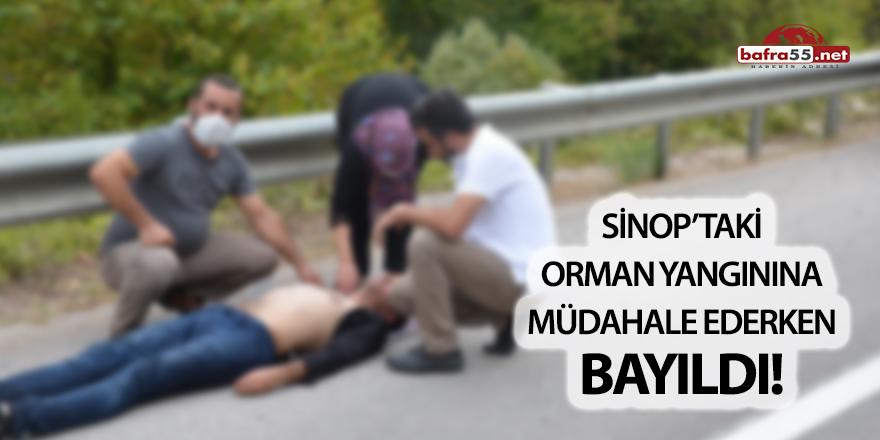 Sinop'taki orman yangınına müdahale ederken bayıldı!
