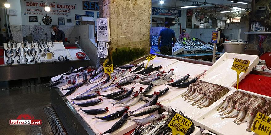 """Mutlu: """"Karadeniz'de son 15 yılda palamut avı yüzde 50 azaldı"""""""