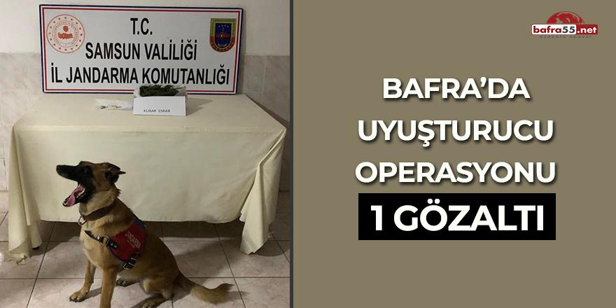 Bafra'da uyuşturucu operasyonu! 1 gözaltı