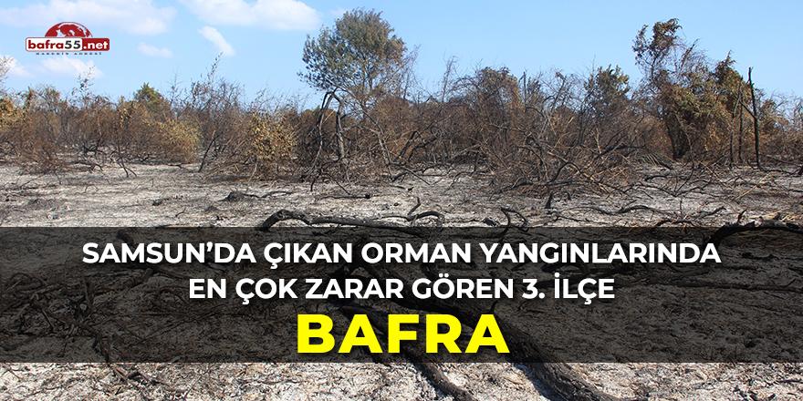 Bafra da Orman Yangını