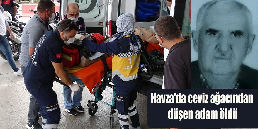 Havza'da ceviz ağacından düşen adam öldü