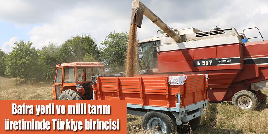Bafra yerli ve milli tarım üretiminde Türkiye birincisi