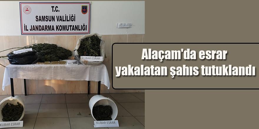 Alaçam'da esrar yakalatan şahıs tutuklandı