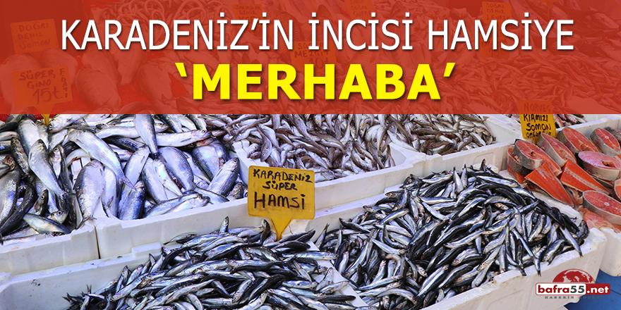 Karadeniz'in incisi hamsiye 'merhaba'
