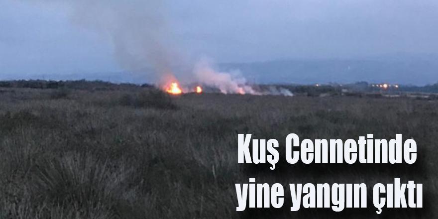 Kuş Cenneti'nde  yine yangın çıktı