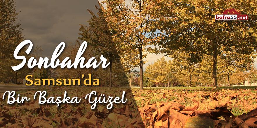 Sonbahar Samsun'da bir başka güzel