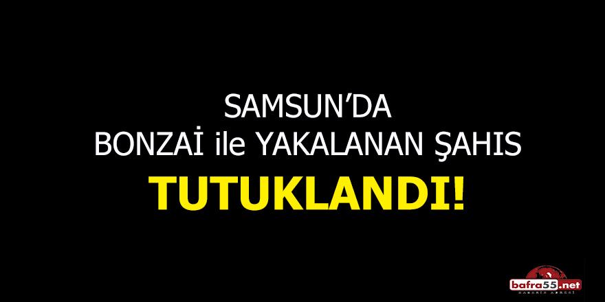 Samsun'da bonzai ile yakalanan şahıs tutuklandı!