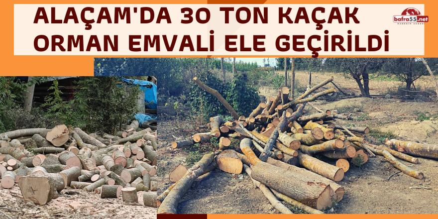 Alaçam'da 30 Ton Kaçak Orman Emvali Ele Geçirildi