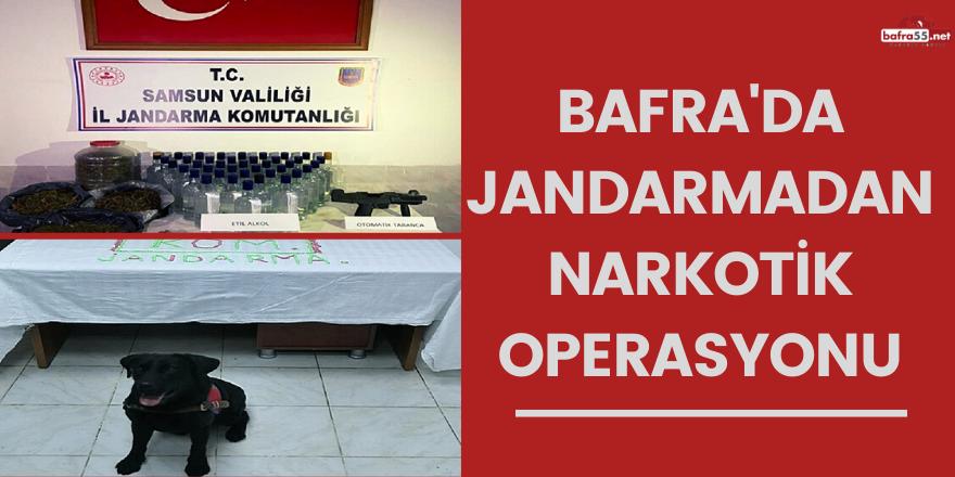 Bafra'da jandarmadan narkotik operasyonu!