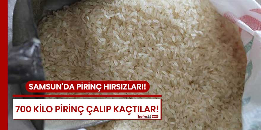 Samsun'da 700 kilo pirinç çalıp kaçtılar!
