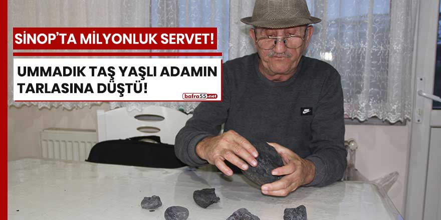 Sinop'ta milyonluk servet!