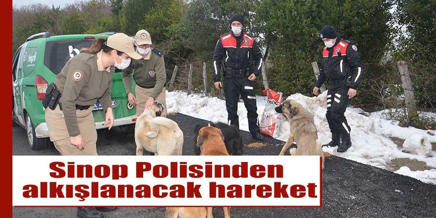 Sinop Polisinden alkışlanacak hareket