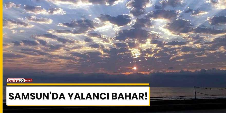 Samsun'da yalancı bahar!