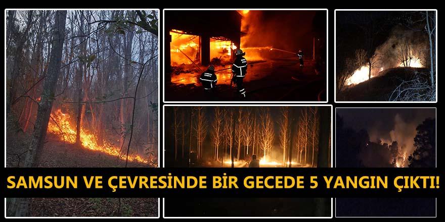 Samsun ve çevresinde bir gecede 5 yangın çıktı!