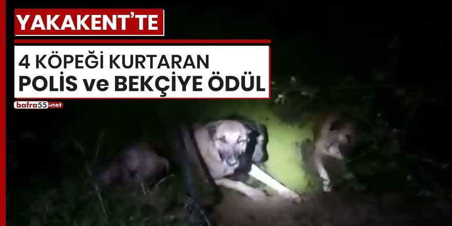 Yakakent'te 4 köpeği kurtaran polis ve bekçiye ödül