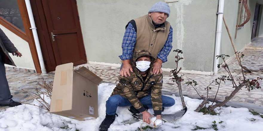 Sinop'ta yaralı martı korumaya alındı