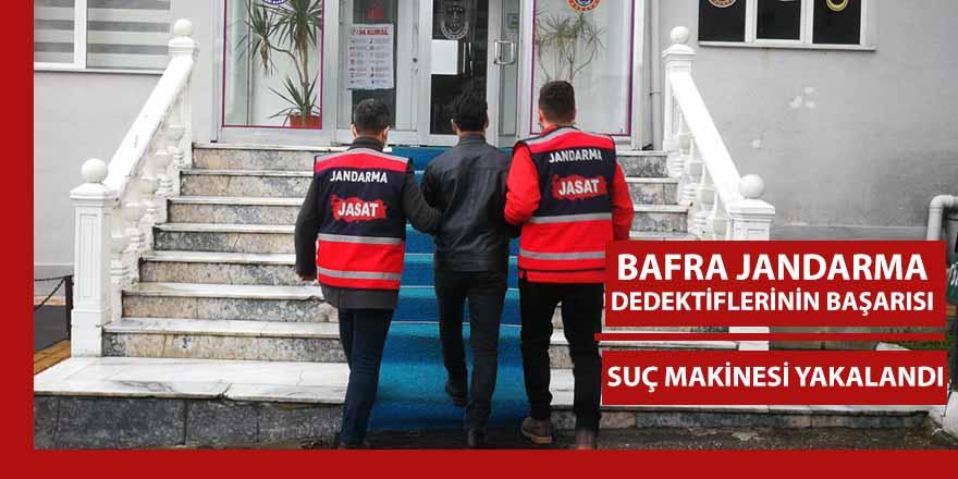 Bafra'da Suç Makinesi Jandarma dedektifleri tarafından yakalandı