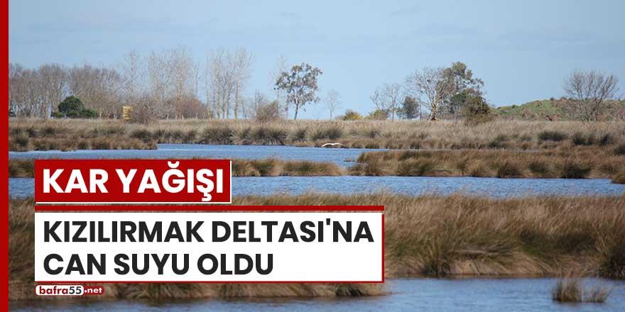 Kar yağışı Kızılırmak Deltası'na can suyu oldu