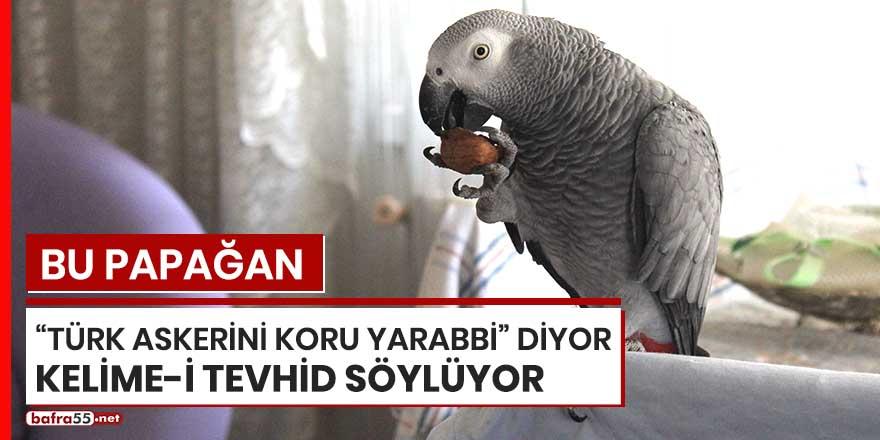 """Bu papağan """"Türk askerini koru Yarabbi diyor"""", Kelime-i Tevhid söylüyor"""