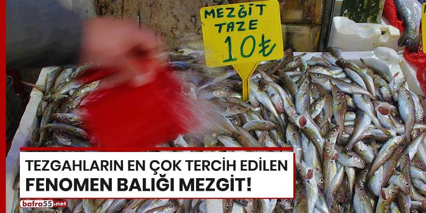 Tezgahların en çok tercih edilen fenomen balığı mezgit