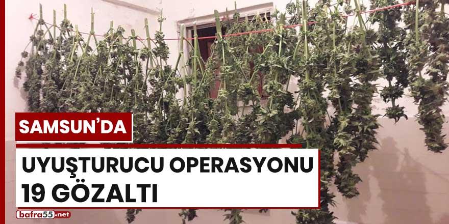Samsun'da uyuşturucu operasyonu! 19 gözaltı