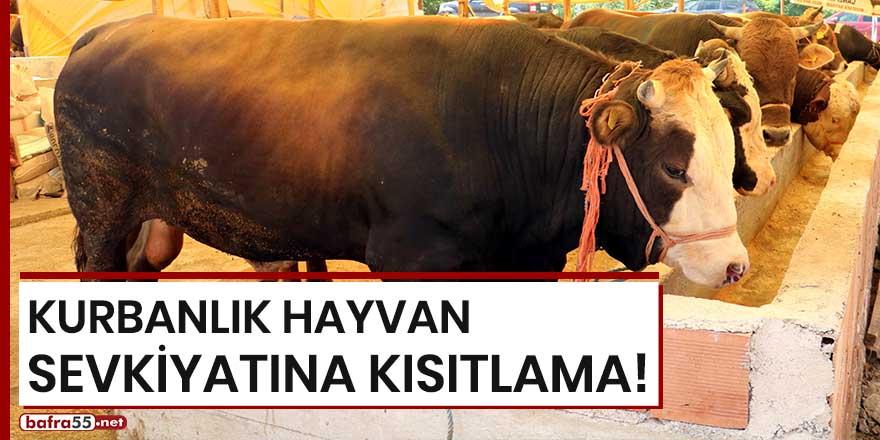 Kurbanlık hayvan sevkiyatına kısıtlama!