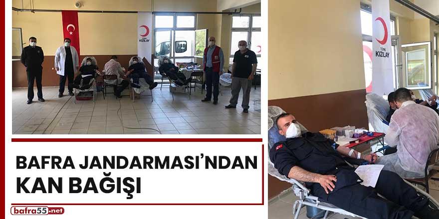 Bafra Jandarması'ndan kan bağışı