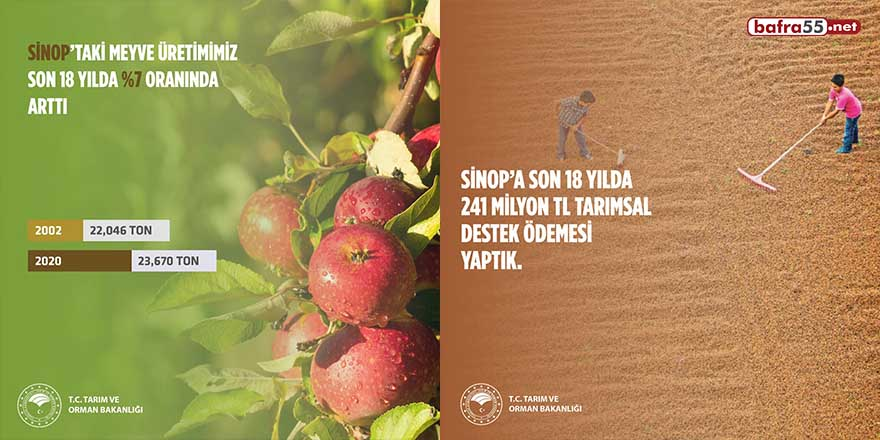 Sinop'ta tarımsal hasıla rekor düzeyde arttı