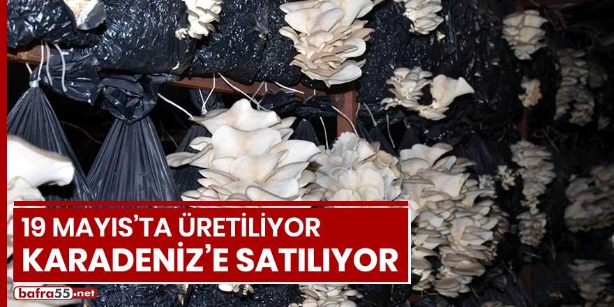 19 Mayıs'ta üretiliyor, Karadeniz'e satılıyor