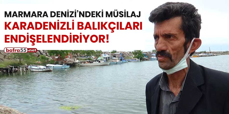Marmara Denizi'ndeki müsilaj Karadeniz balıkçıları endişeleniyor