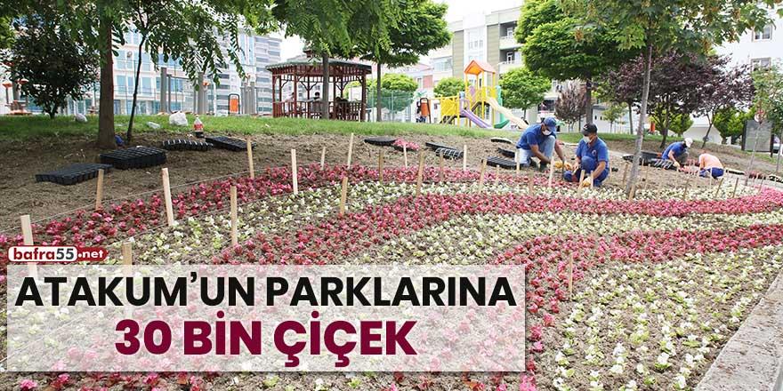 Atakum'un parklarına 30 bin çiçek