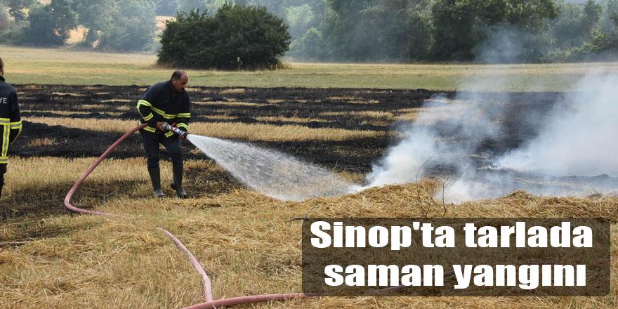 Sinop'ta tarlada saman yangını