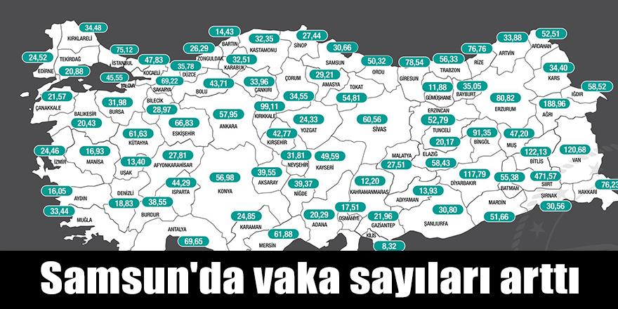 Samsun'da vaka sayıları arttı