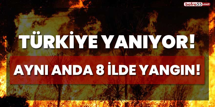 Türkiye yanıyor! Aynı anda 8 ilde yangın!
