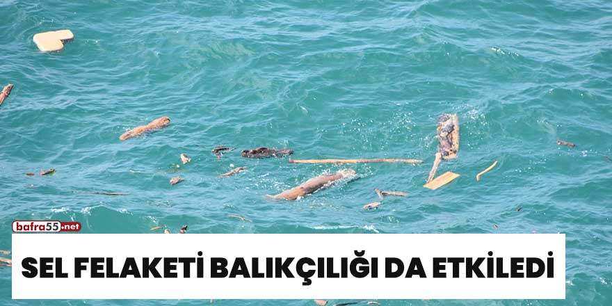 Sel felaketi balıkçılığı da etkiledi