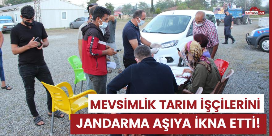 Mevsimlik tarım işçilerini Jandarma aşıya ikna etti!