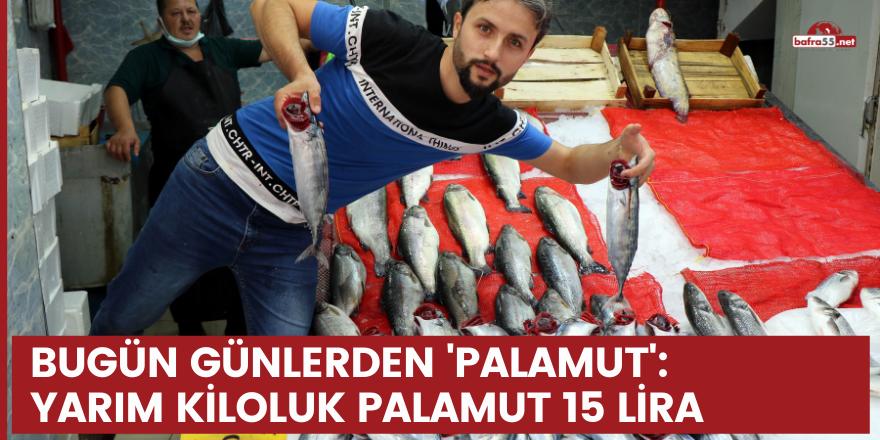 Bugün günlerden 'palamut': Yarım kiloluk palamut 15 lira