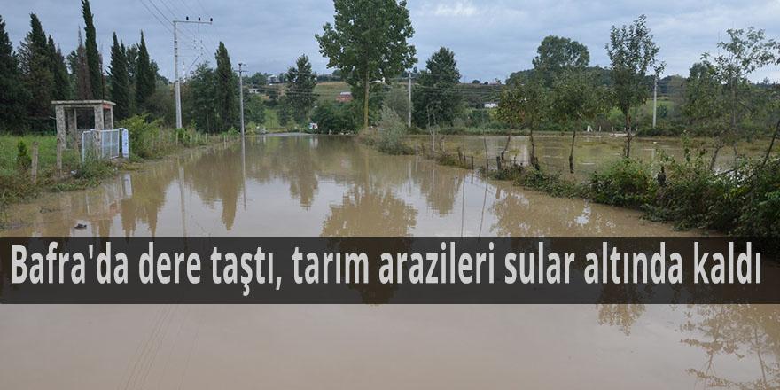 Bafra'da dere taştı, tarım arazileri sular altında kaldı