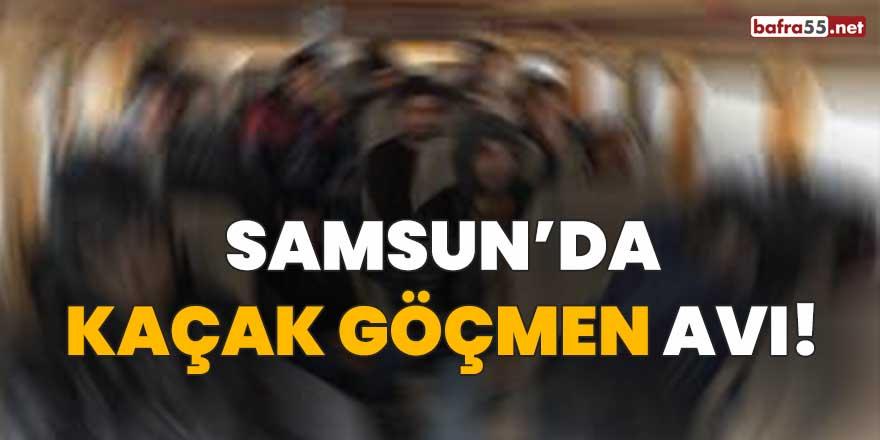 Samsun'da kaçak göçmen avı!