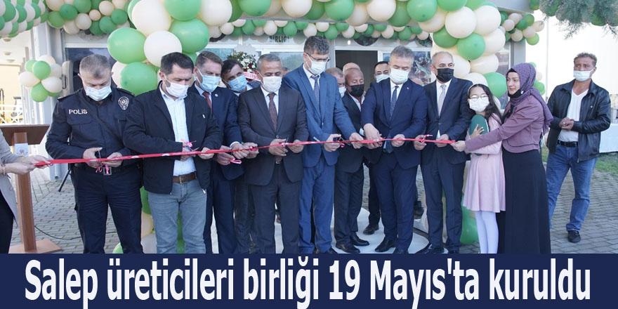 Salep üreticileri birliği 19 Mayıs'ta kuruldu