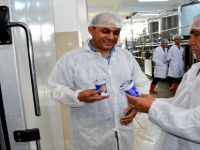 Kaymakam Halis Arslan'dan Emenli'de Süt Fabrikasını Ziyaret etti