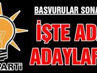 AK Parti adayları belli oldu