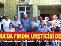 BAFRA'DA FINDIK ÜRETİCİSİ DERTLİ