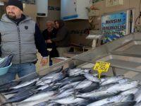 Soğuk hava Balık fiyatlarına vurdu